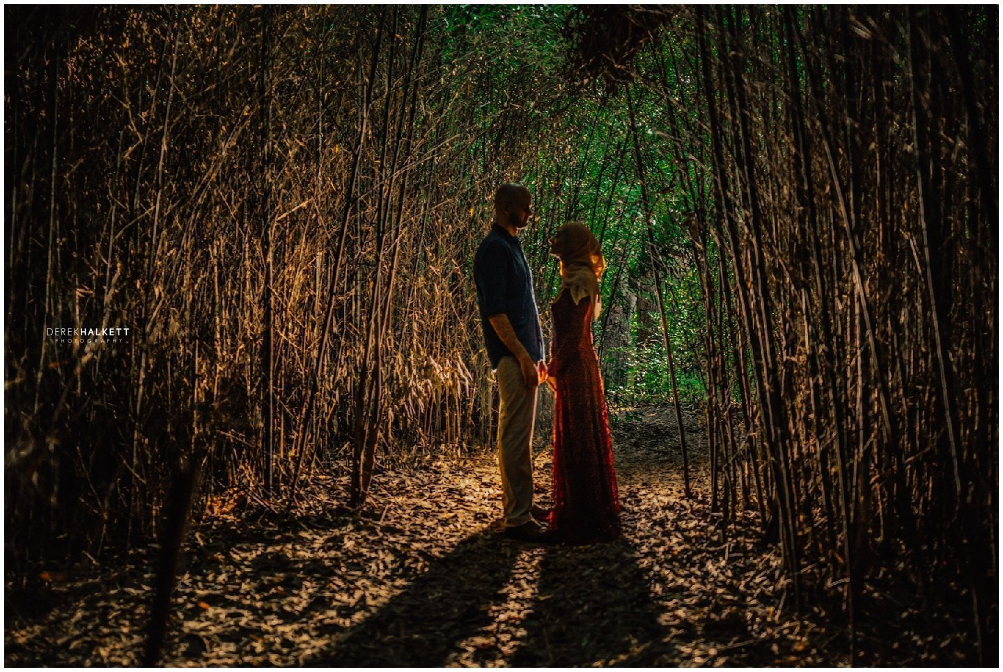 Knoxville Botanical Garden Engagement- Ayah and Ahmed